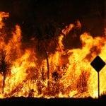 Real Estate Market Update: Natural Disaster – Fire Sale