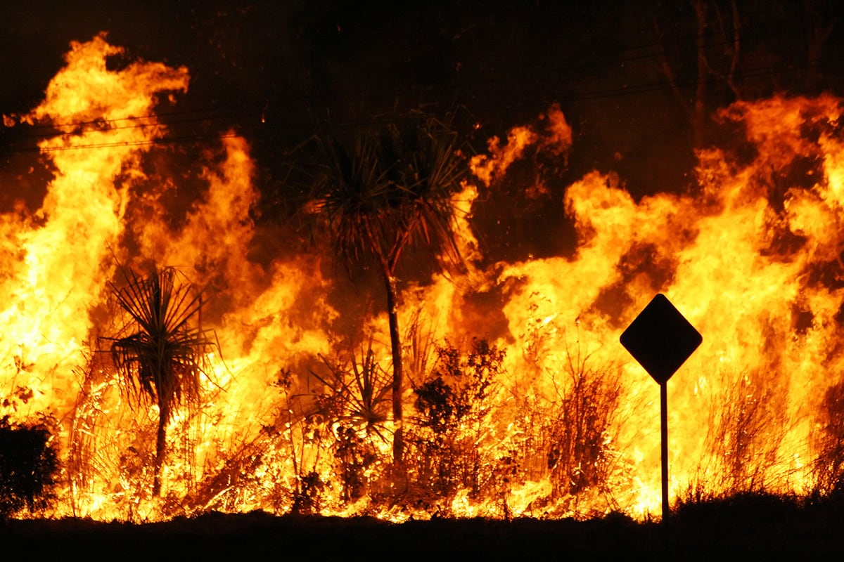 Real Estate Market Update: Natural Disaster - Fire Sale